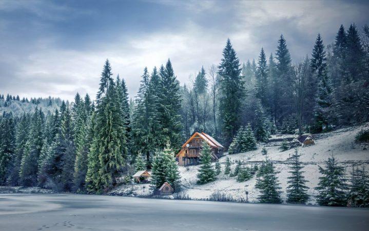 Дача на опушке: как построить дом в лесу_601f808b0a735.jpeg