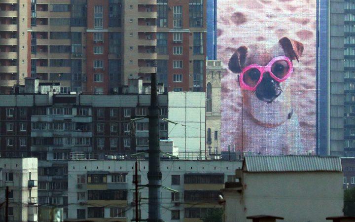 Росреестр объявил о рекордном числе сделок со вторичным жильем в Москве_6007c59d1b6b9.jpeg